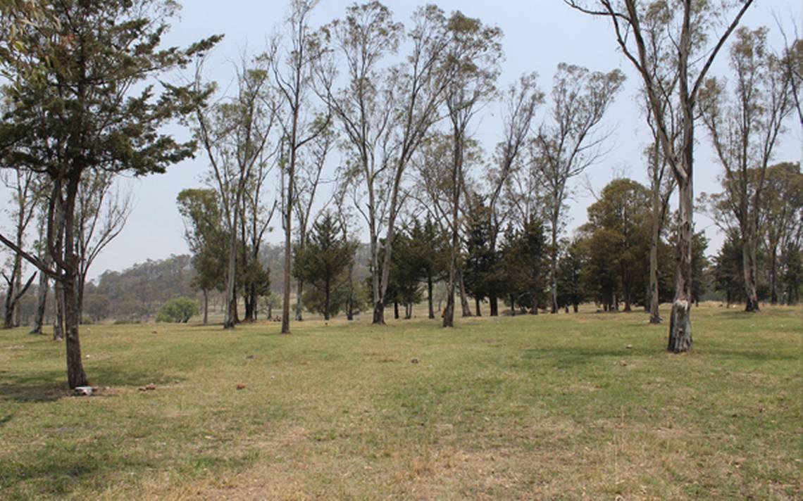Cerro de Amalucan